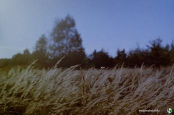 wojciech dulski fotografia rzeszow -25