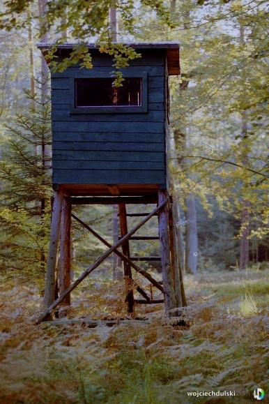 wojciech dulski fotografia rzeszow -32