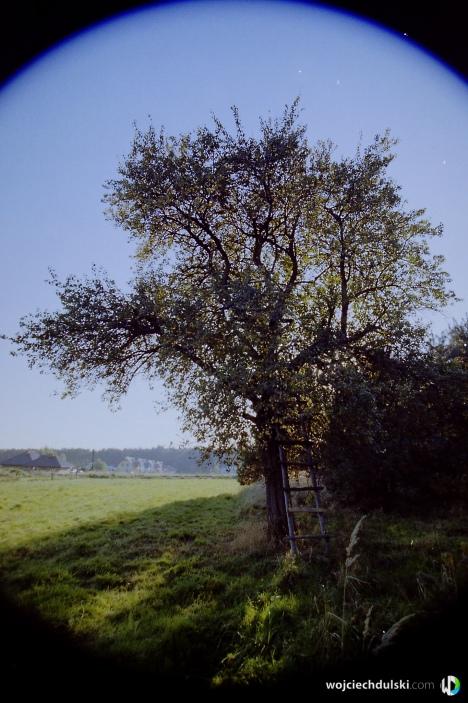 wojciech dulski fotografia rzeszow -8